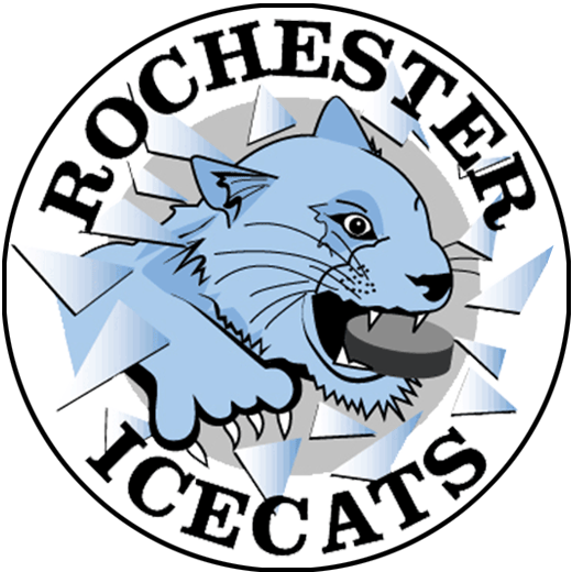 Rochester Special Hockey