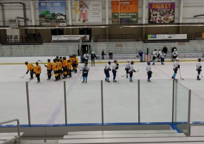 Ice-Cats-vs-McQuaid